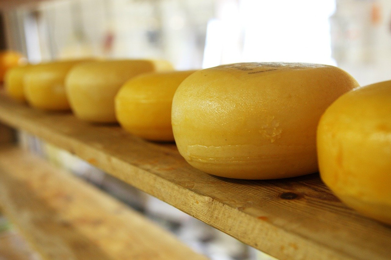 cheese wheels